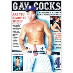 DVD-Gay Cocks